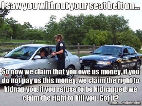 seatbelt police state