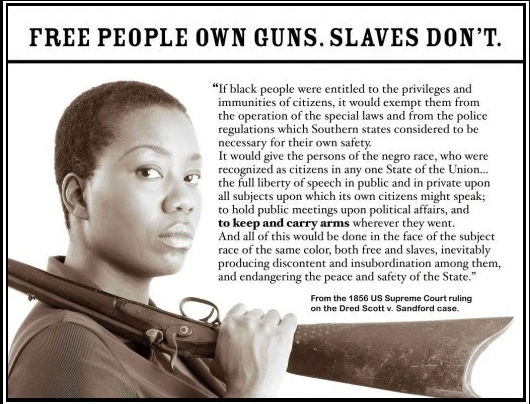 guns and slaves.png