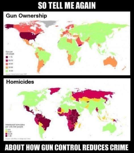 ownerships vs homicides
